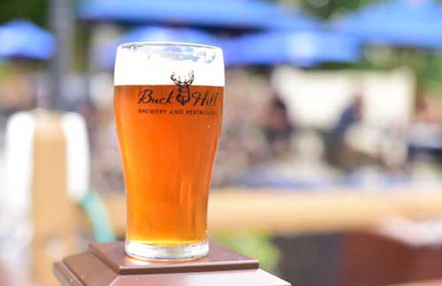 Pint of Beer at Buck Hill Brewery Blairstown